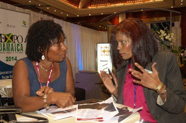 Marlene Porter, Manager for Export Development (right), speaks to an attendee at the Jamaica Diaspora Conference held in 2013. JAMPRO will be marketing Jamaica as a place for investment from the Diaspora community at the 2015 Jamaica Diaspora Conference to be held in Montego Bay.