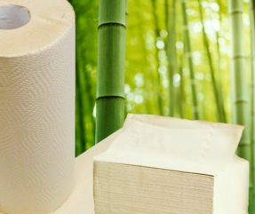 Bamboo Paper Products 718px X 603px (1)_EDITED