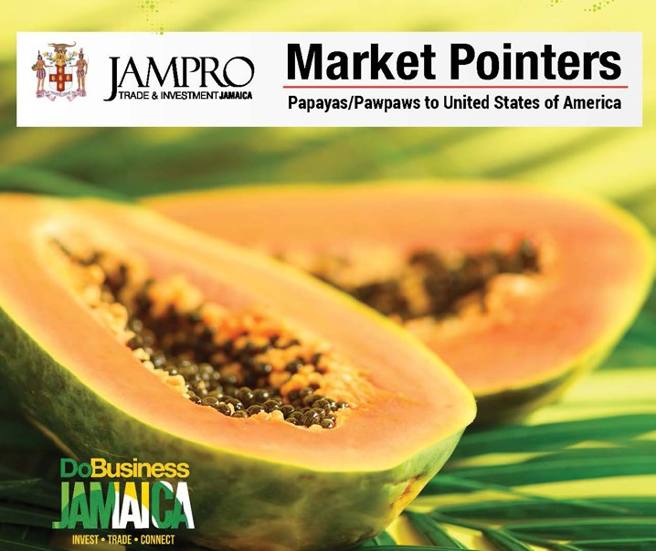 Market Pointer_Papaya