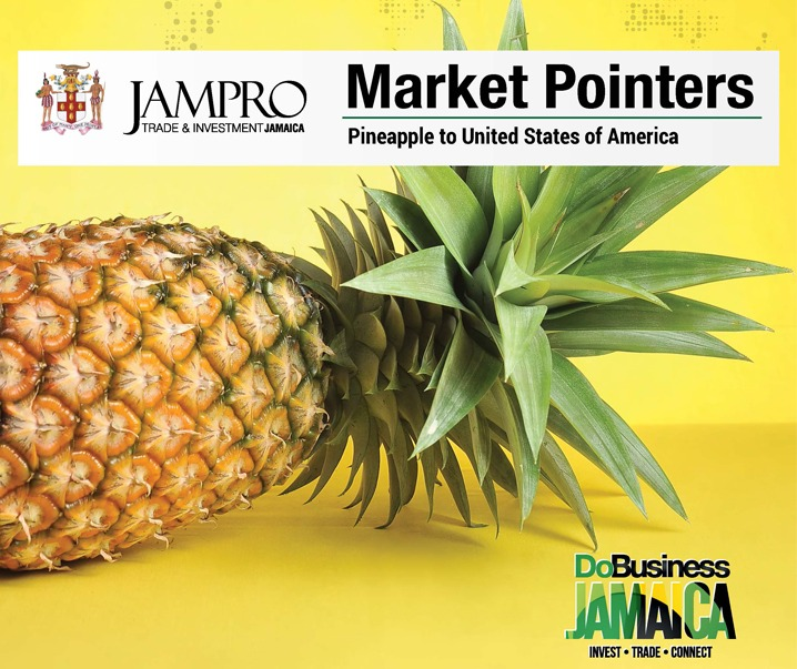 MarketPointer_Pineapple_JAMPRO