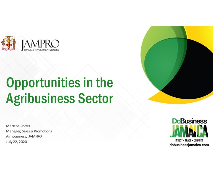 Opportunities in the Agribusiness Sector_JAMPRO
